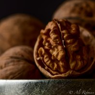Up and close with a Walnut